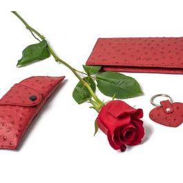 Set accesorii, piele de strut, rosie